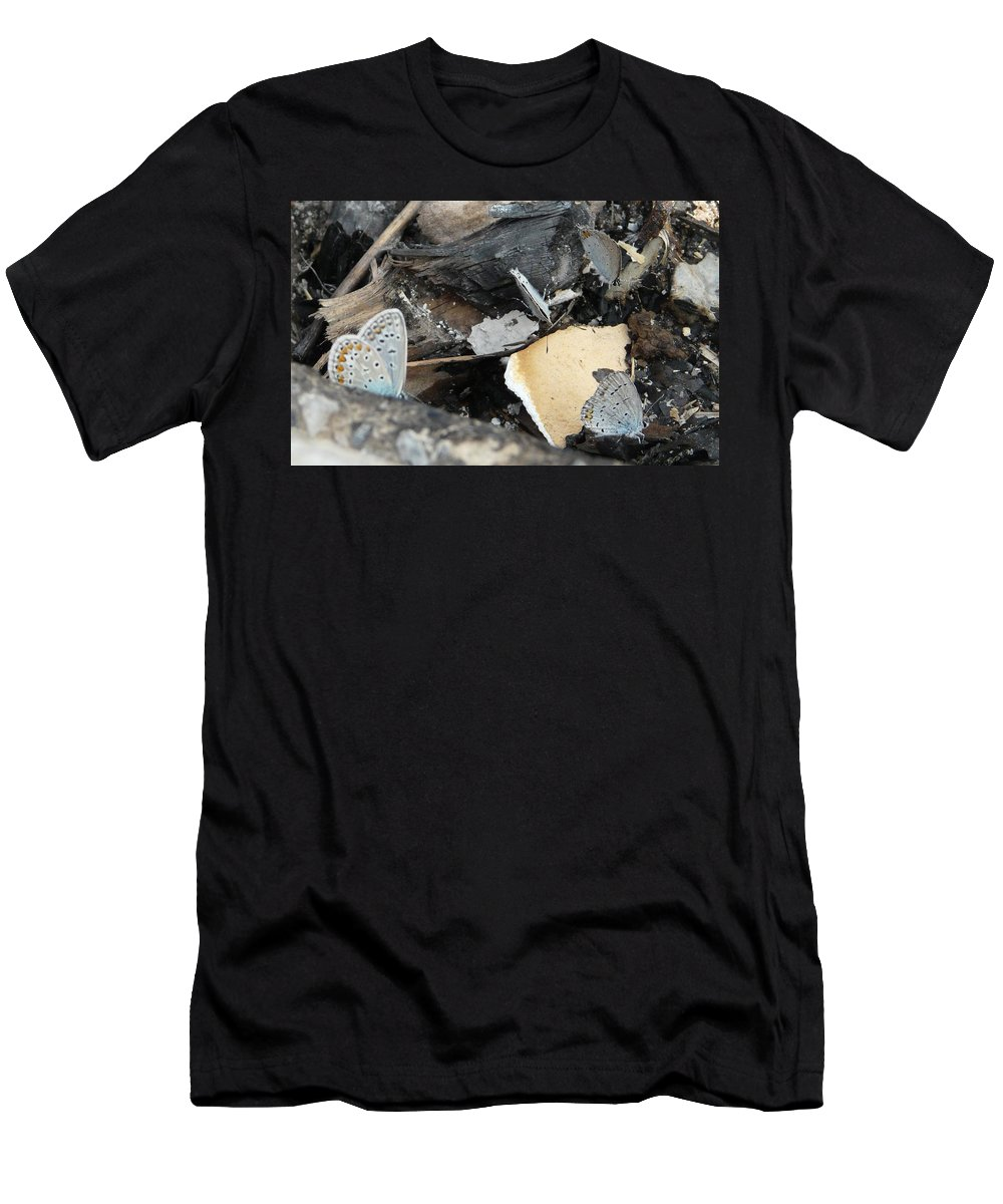 Maculinea Arion Men's T-Shirt (Athletic Fit) featuring the photograph Large Blue Butterfly by Valerie Ornstein