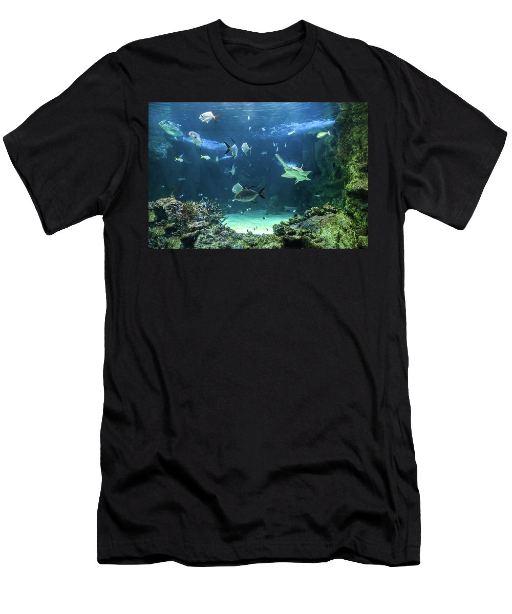 Amusement Men's T-Shirt (Athletic Fit) featuring the photograph Large Sawfish And Other Fishes Swimming In A Large Aquarium by Miroslav Liska