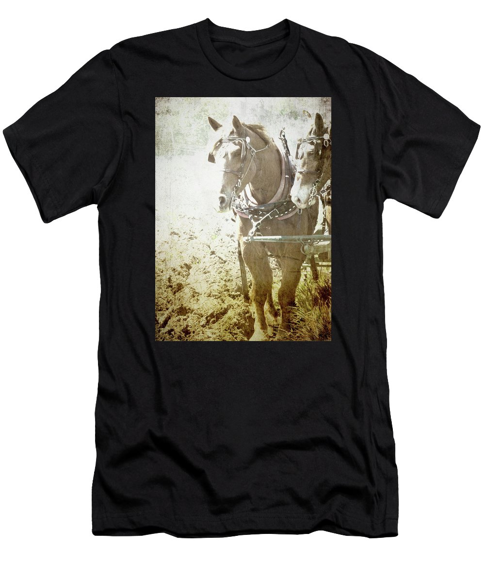 Horse Men's T-Shirt (Athletic Fit) featuring the photograph Last Row by Char Szabo-Perricelli