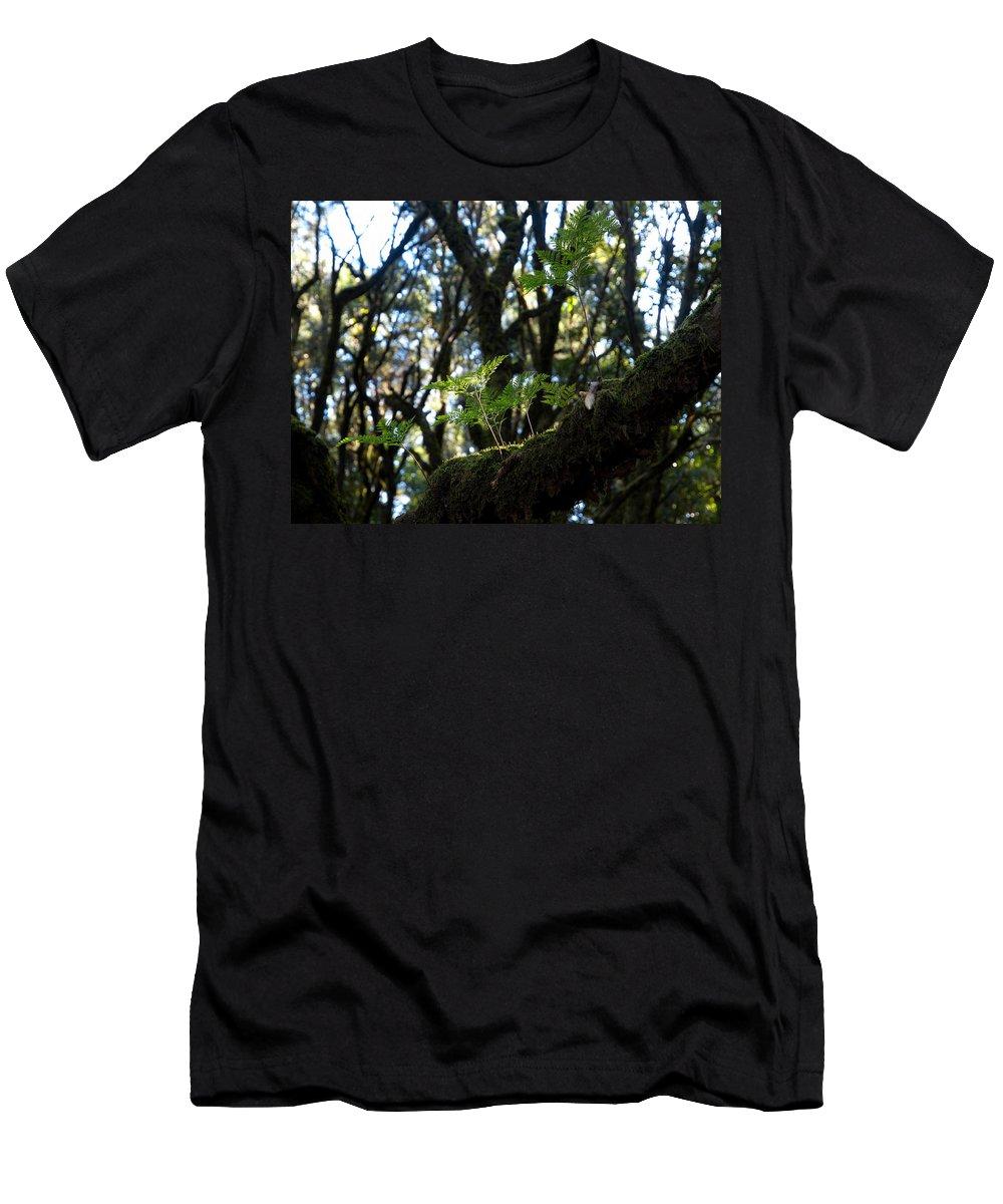 La Gomera Men's T-Shirt (Athletic Fit) featuring the photograph Laurisilva 2 by Jouko Lehto