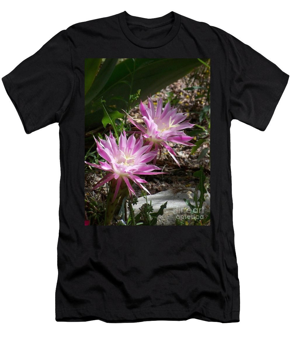 Cactus Men's T-Shirt (Athletic Fit) featuring the photograph Lavendar Cactus Flowers by Kathy McClure