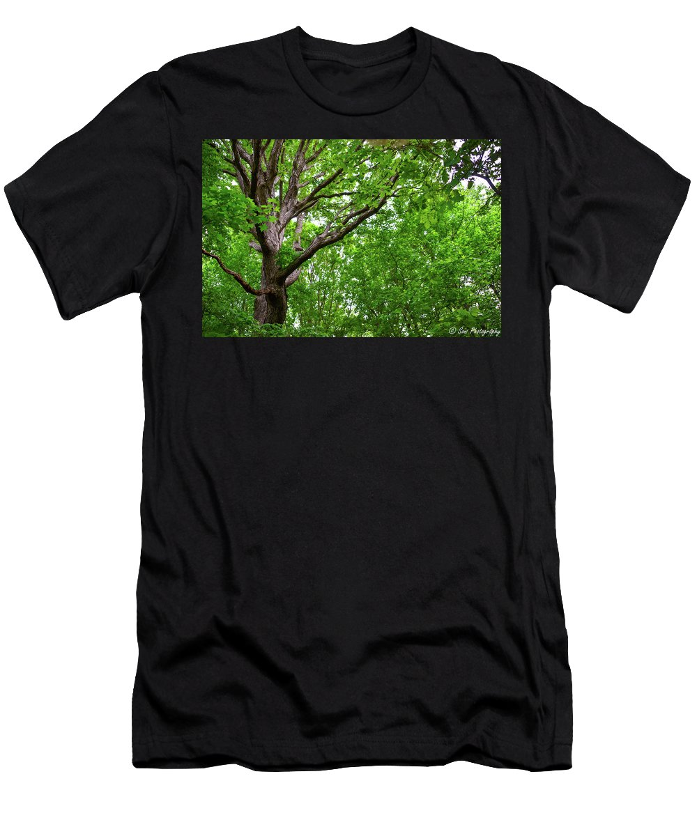 Diagonal Men's T-Shirt (Athletic Fit) featuring the photograph Leafy Canopy by Soni Macy