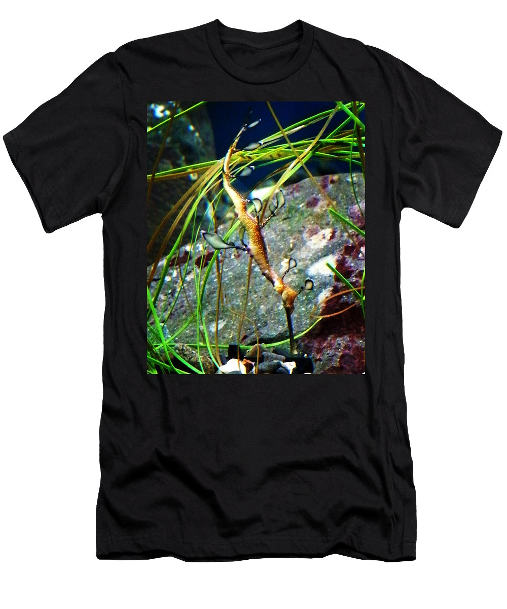 Paintings Men's T-Shirt (Athletic Fit) featuring the photograph Leafy Sea Dragon by Anthony Jones