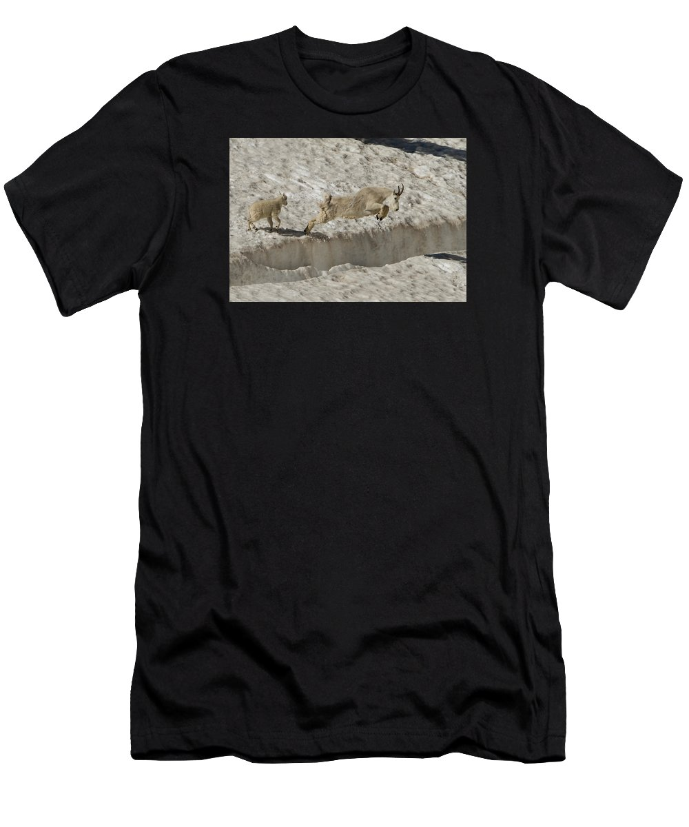 Mountain Goat Men's T-Shirt (Athletic Fit) featuring the photograph Leap Of Faith by Kent Keller