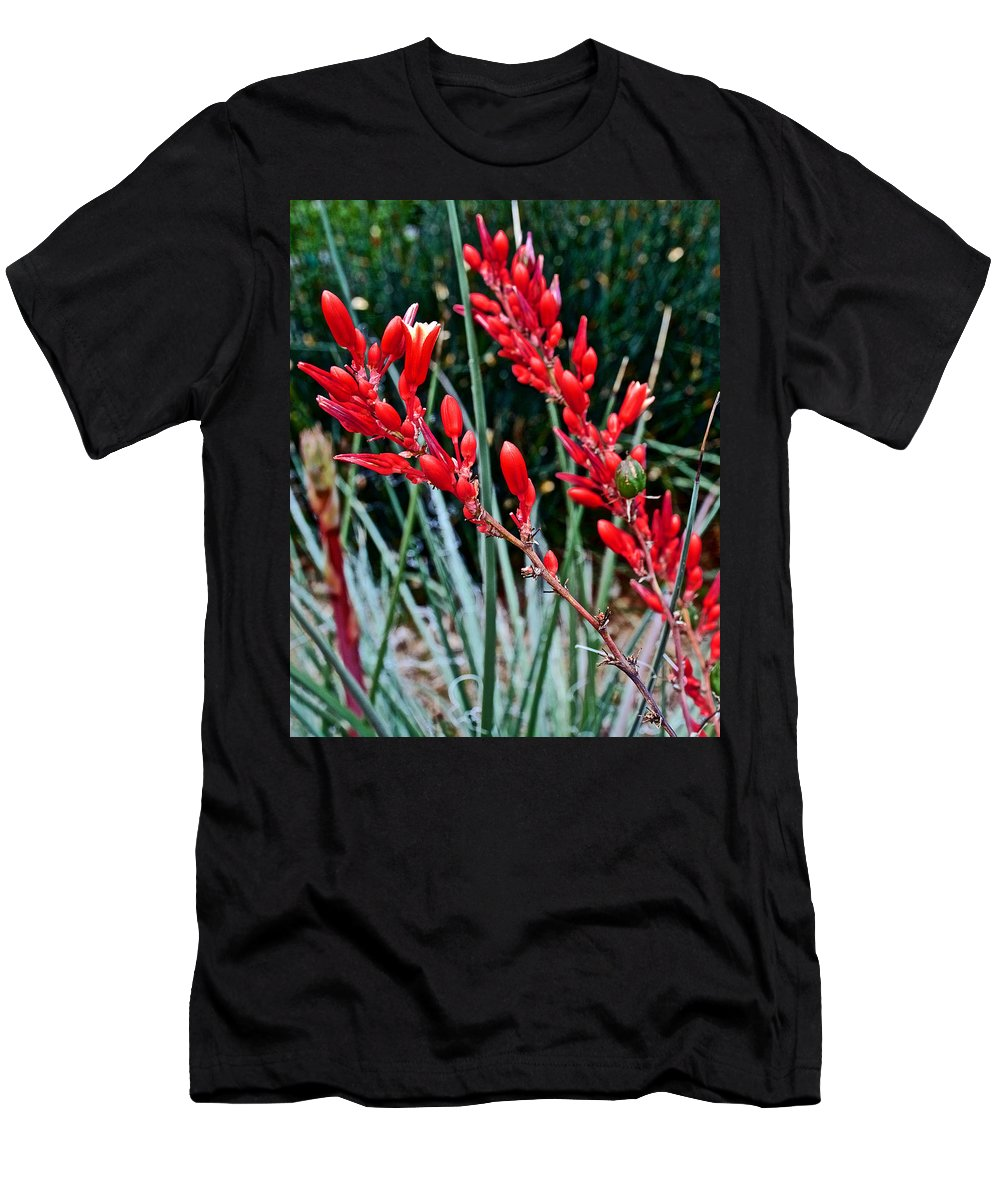 Lechuguilla Agave At Pilgrim Place In Claremont Men's T-Shirt (Athletic Fit) featuring the photograph Lechuguilla Agave At Pilgrim Place In Claremont-california by Ruth Hager