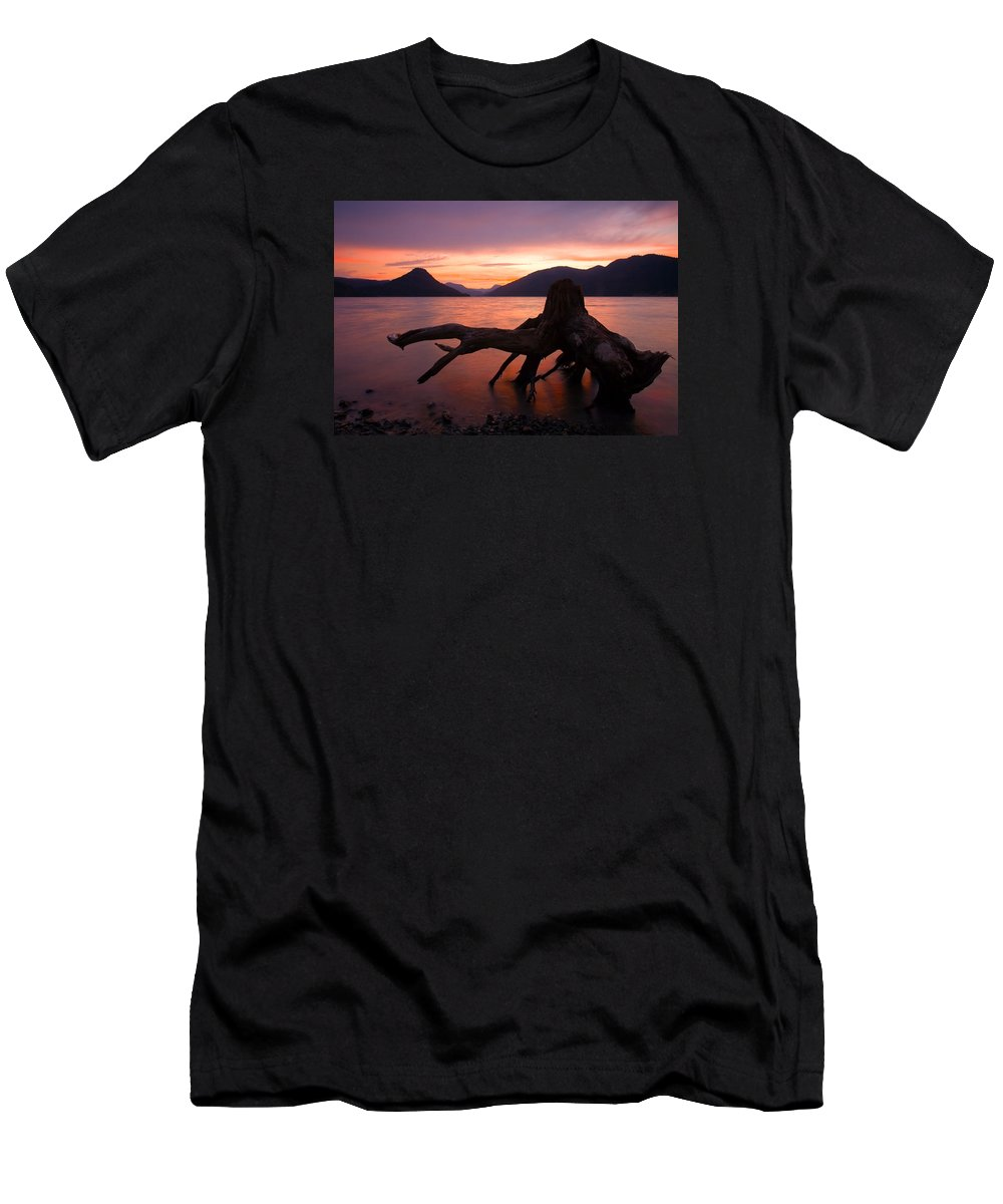 Stump Men's T-Shirt (Athletic Fit) featuring the photograph Left Behind by Mike Dawson
