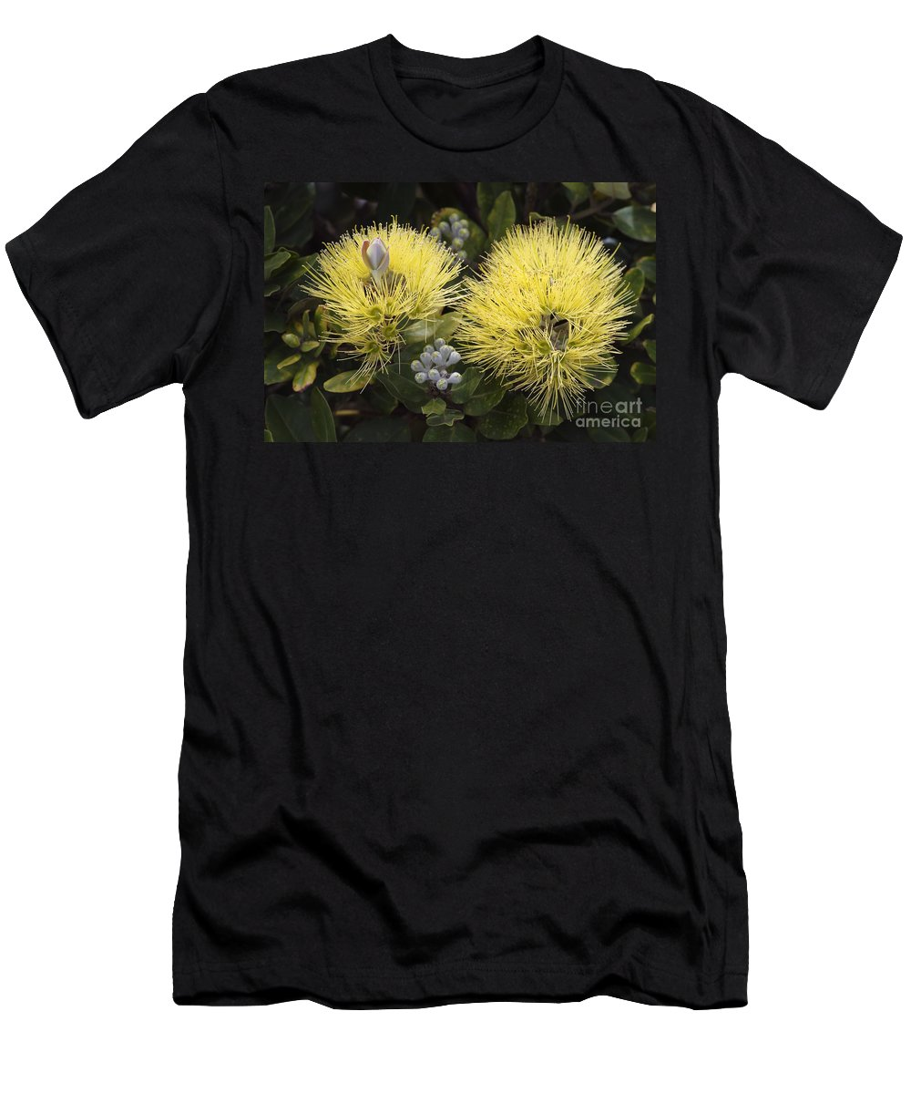 Bloom Men's T-Shirt (Athletic Fit) featuring the photograph Lehua Mamo Blossom by Greg Vaughn - Printscapes