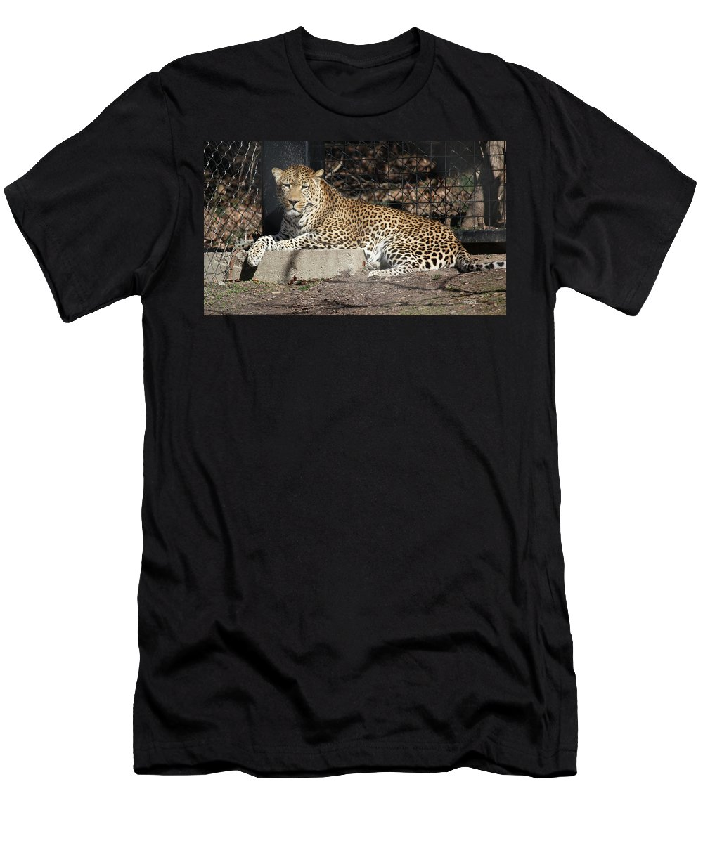 Maryland Men's T-Shirt (Athletic Fit) featuring the photograph Leopard Relaxing by Ronald Reid