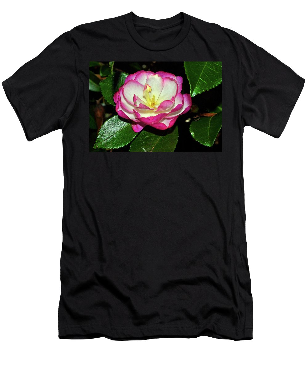 Camellia Men's T-Shirt (Athletic Fit) featuring the photograph Leslie Ann - Sasanqua Camellia 006 by George Bostian