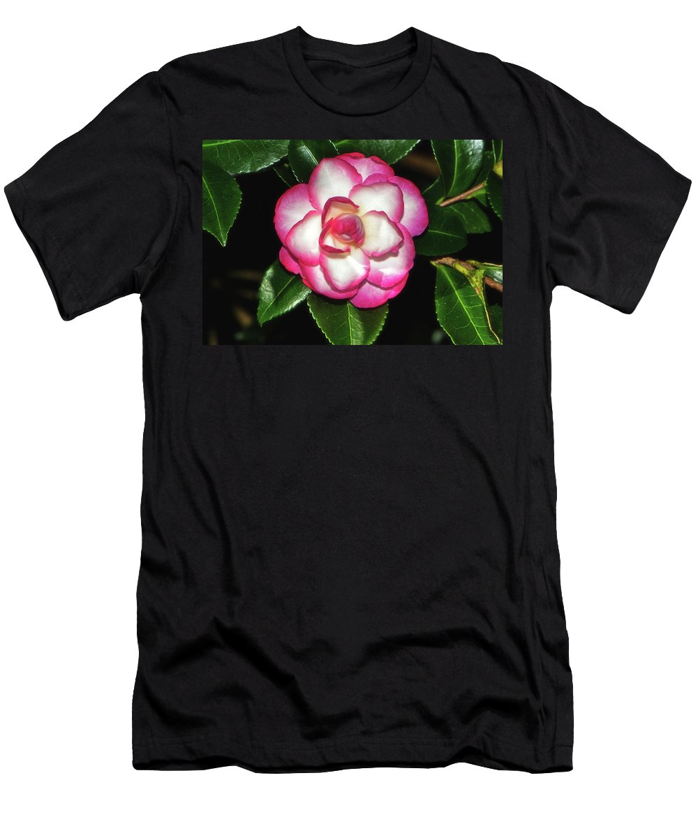 Camellia Men's T-Shirt (Athletic Fit) featuring the photograph Leslie Ann - Sasanqua Camellia 007 by George Bostian