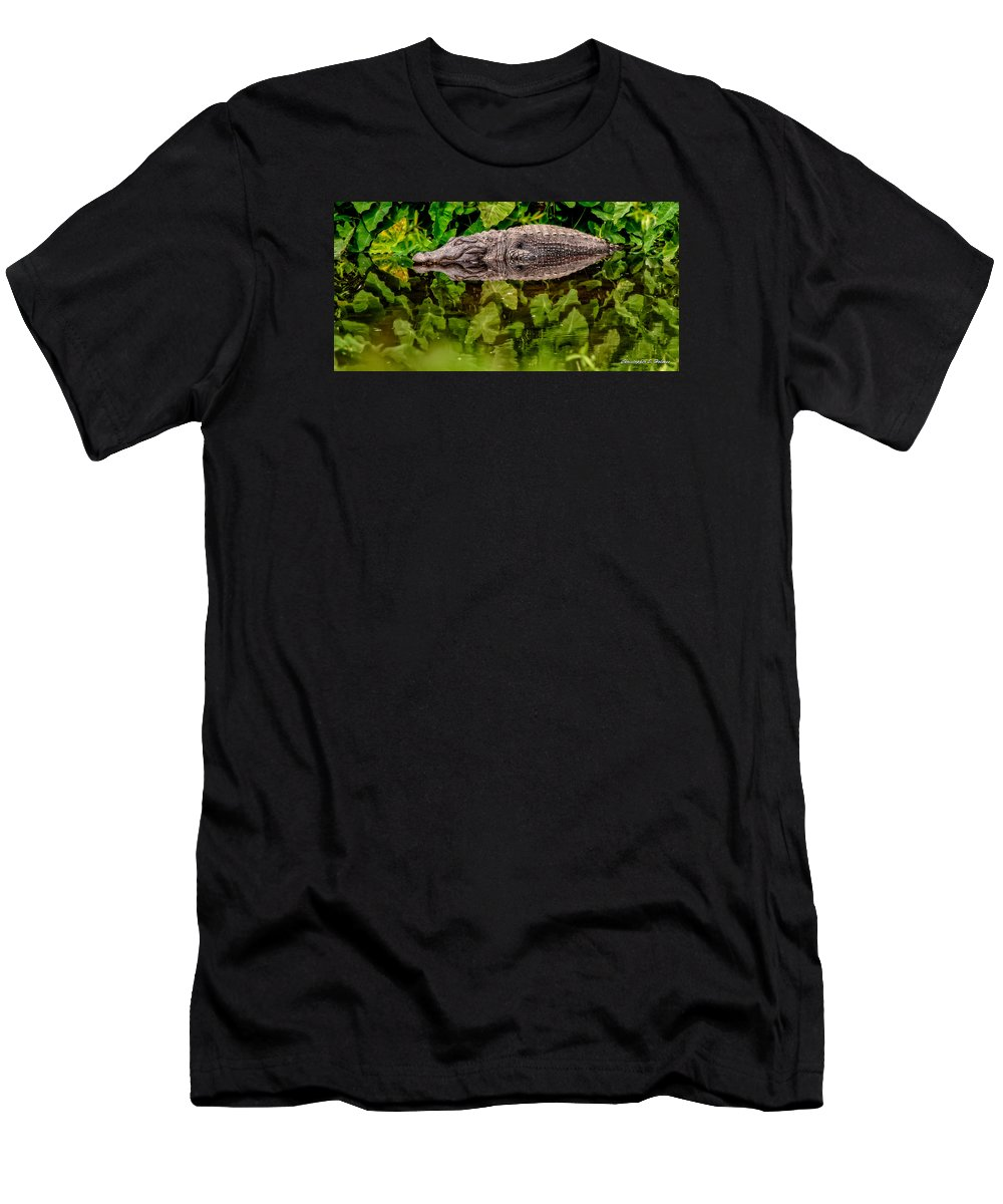 Alligator Men's T-Shirt (Athletic Fit) featuring the photograph Let Sleeping Gators Lie by Christopher Holmes