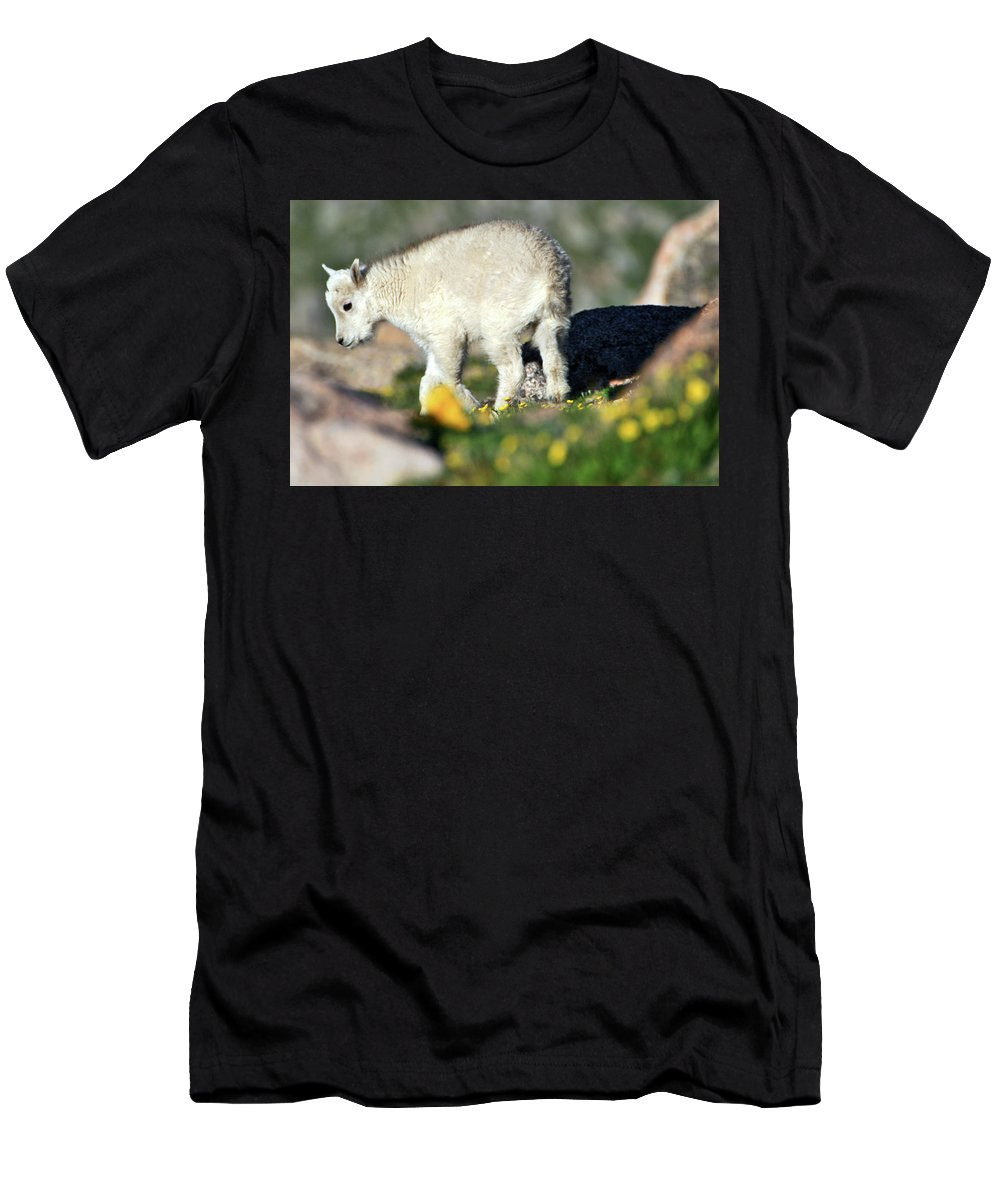Wildlife Men's T-Shirt (Athletic Fit) featuring the photograph Life Begins In The Spring by Scott Mahon