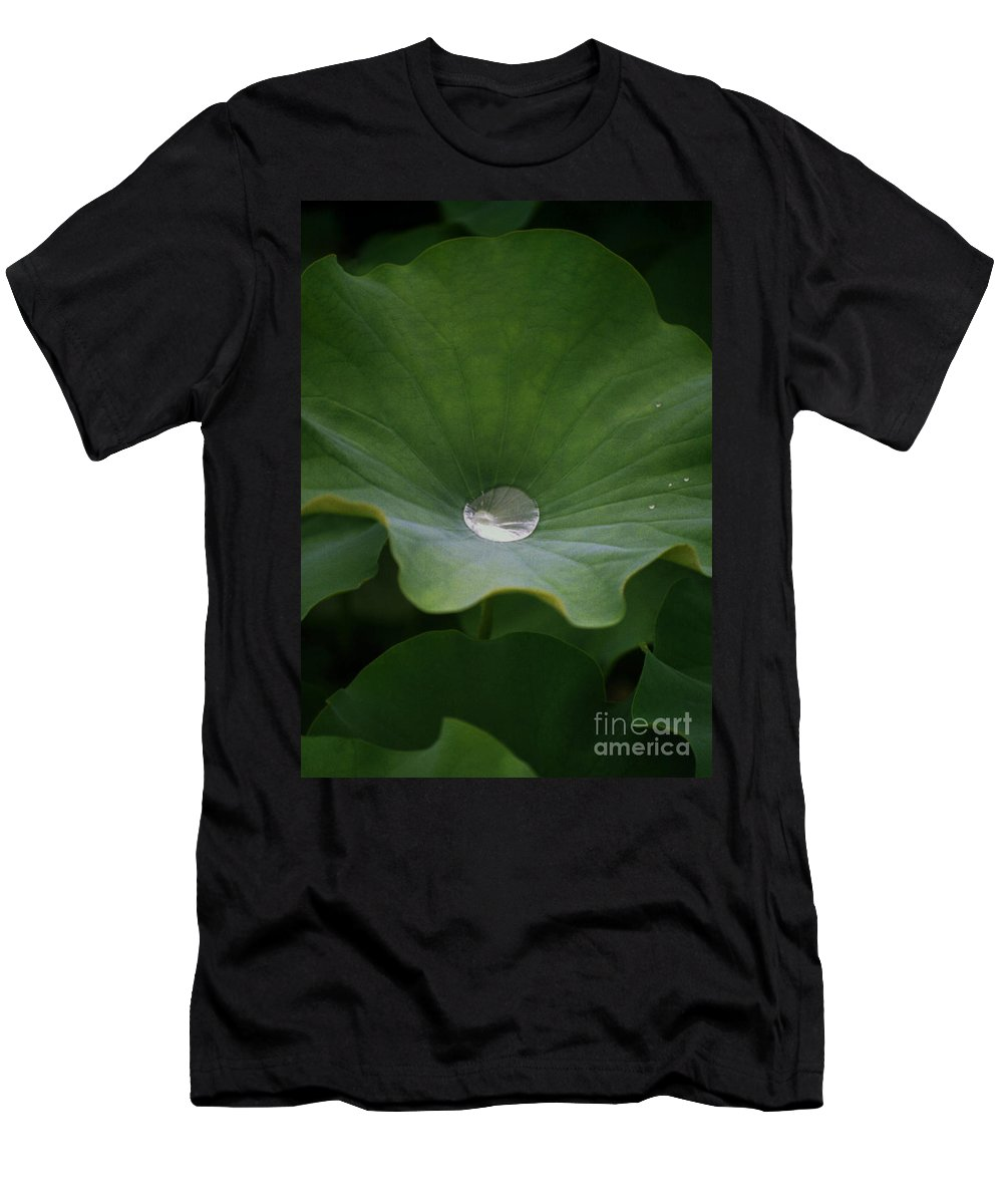 Plant Men's T-Shirt (Athletic Fit) featuring the photograph Life by Richard Rizzo