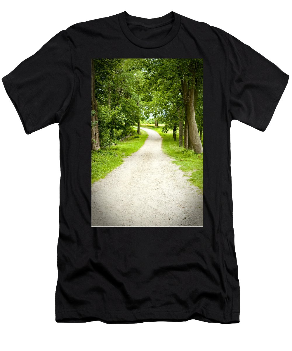 Woods Men's T-Shirt (Athletic Fit) featuring the photograph Life's Path by Greg Fortier