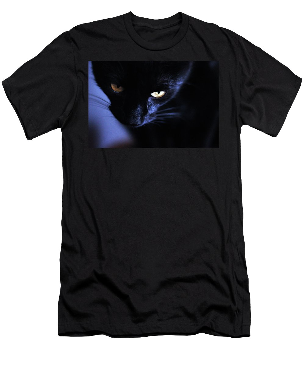 Cats Men's T-Shirt (Athletic Fit) featuring the photograph Light And Dark by Samantha Burrow