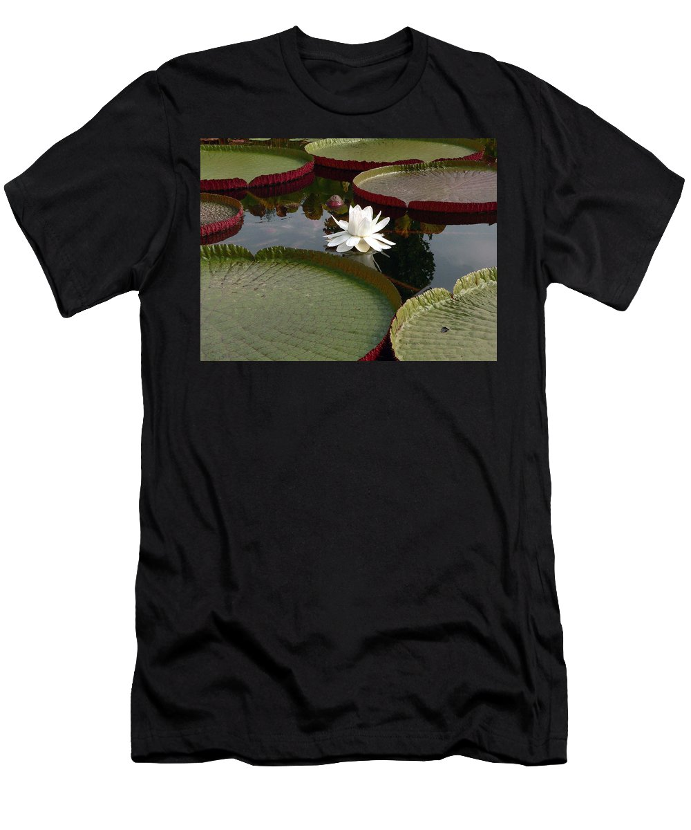 Water Lily Men's T-Shirt (Athletic Fit) featuring the photograph Lily by David Bearden