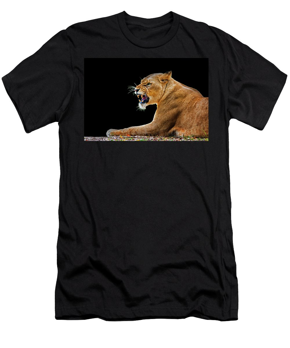 Men's T-Shirt (Athletic Fit) featuring the photograph Lion On Black by Gabriel Jardim
