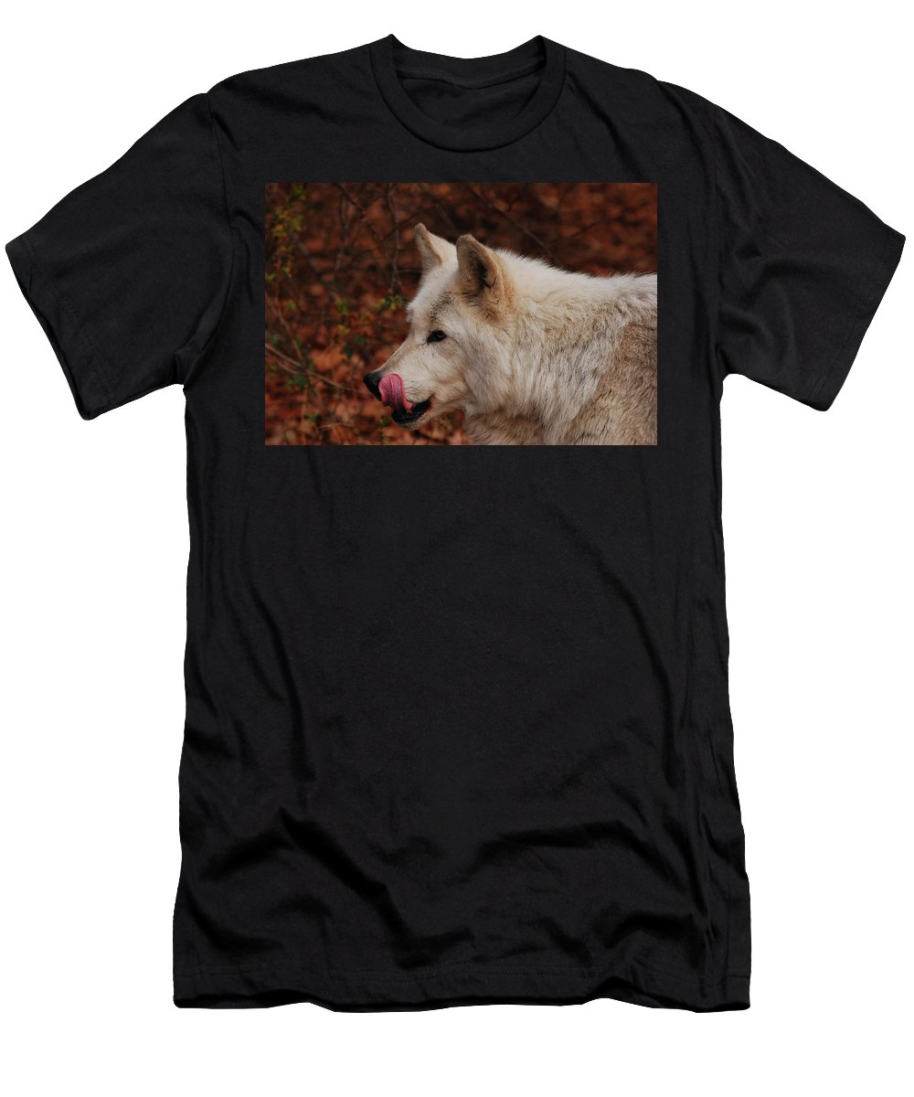Wolf T-Shirt featuring the photograph Lip Smacking Good by Lori Tambakis