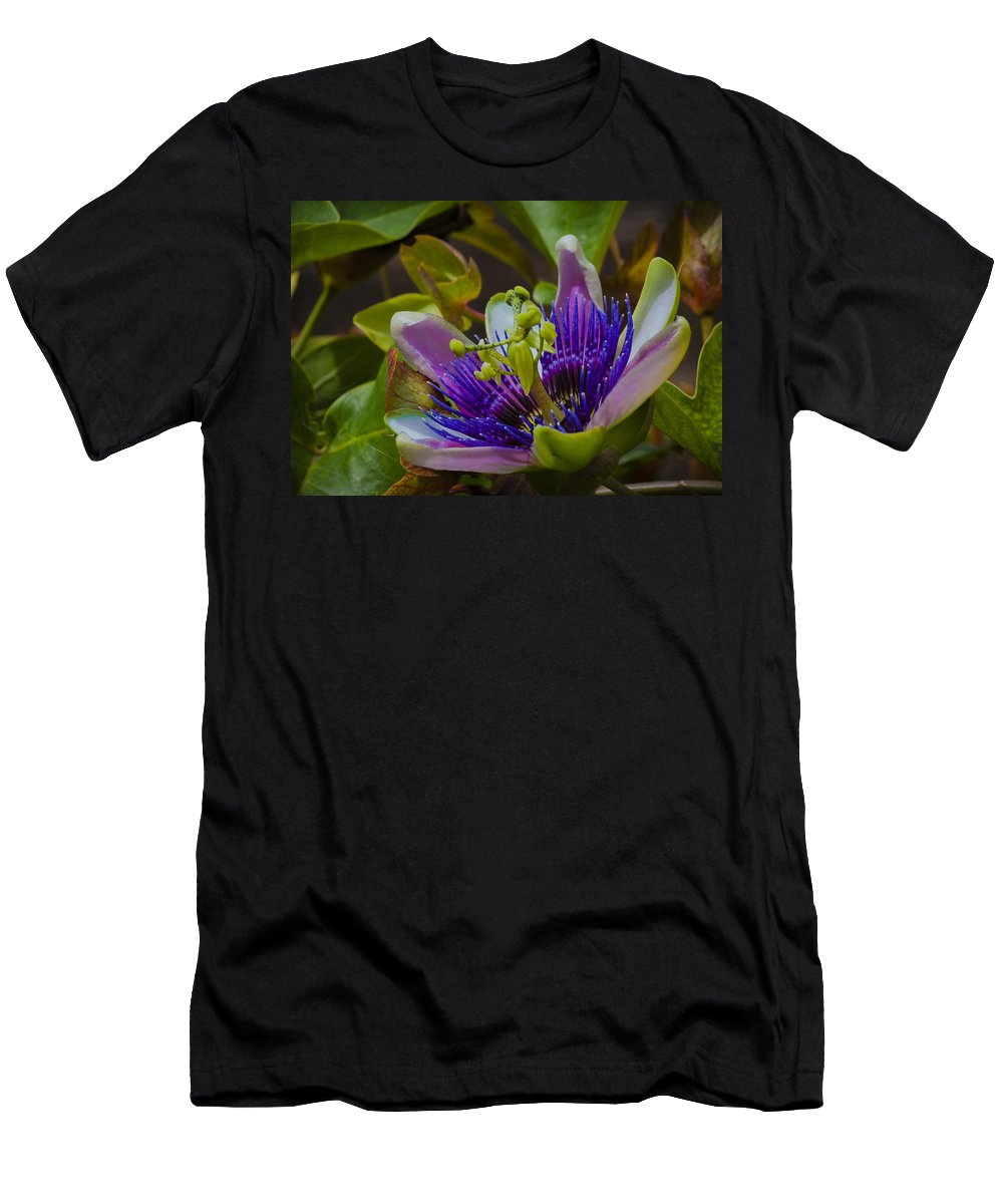 Passion Flower Men's T-Shirt (Athletic Fit) featuring the photograph Listening To Deep Space by Dennis Reagan