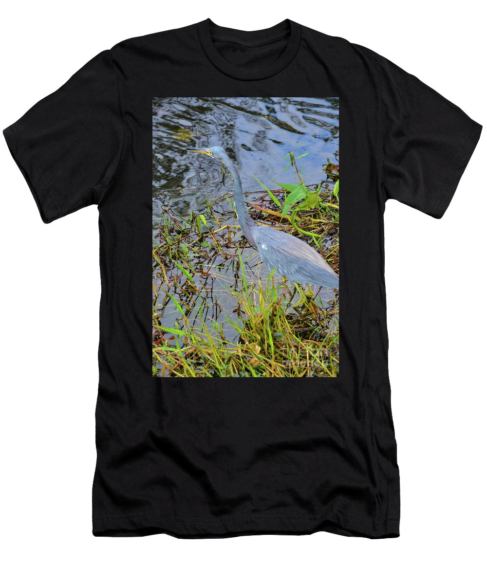 The Everglades Men's T-Shirt (Athletic Fit) featuring the photograph Little Blue Heron by Bob Phillips
