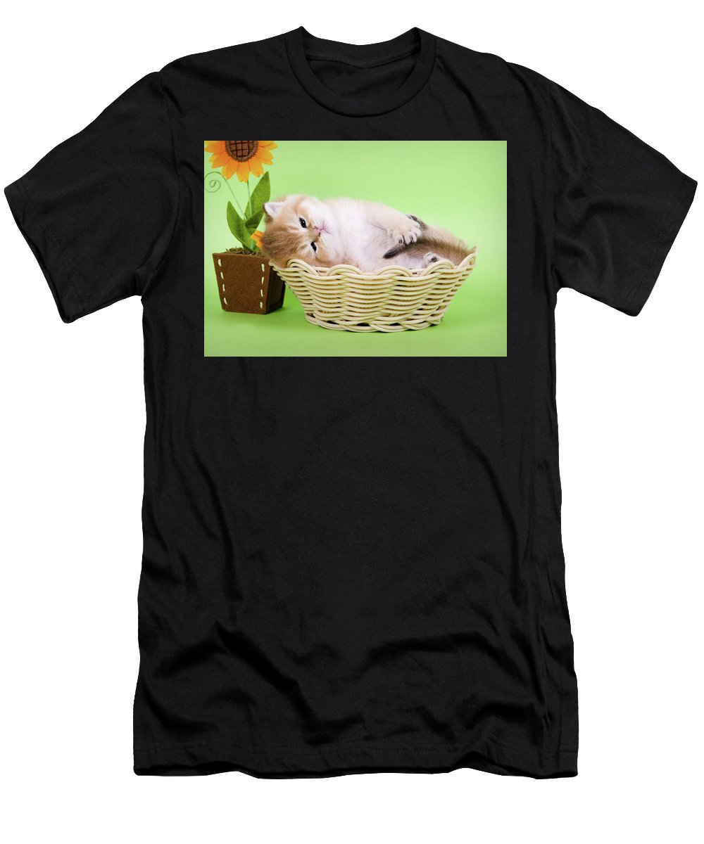Kitten Men's T-Shirt (Athletic Fit) featuring the photograph Little Kitten by Angela Savenko