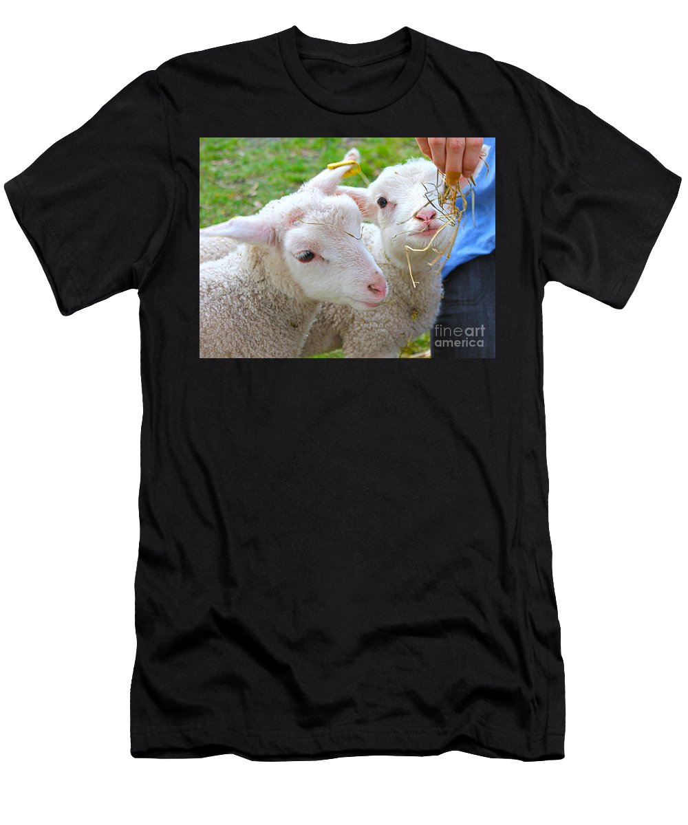 Straw Men's T-Shirt (Athletic Fit) featuring the photograph Little Lambs Eat Straw Not Ivy by Nina Silver
