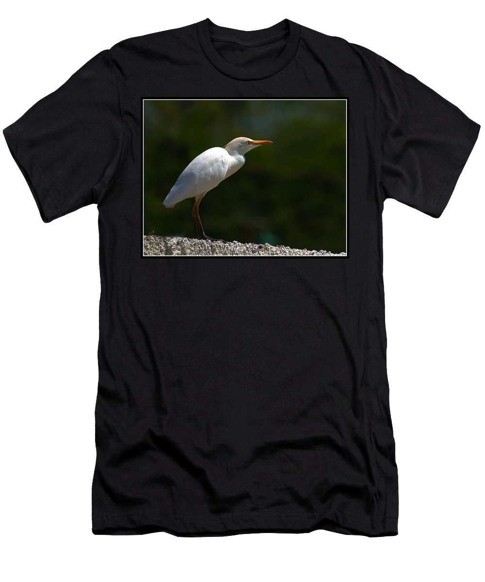 Little Men's T-Shirt (Athletic Fit) featuring the photograph Little White Heron by Galeria Trompiz
