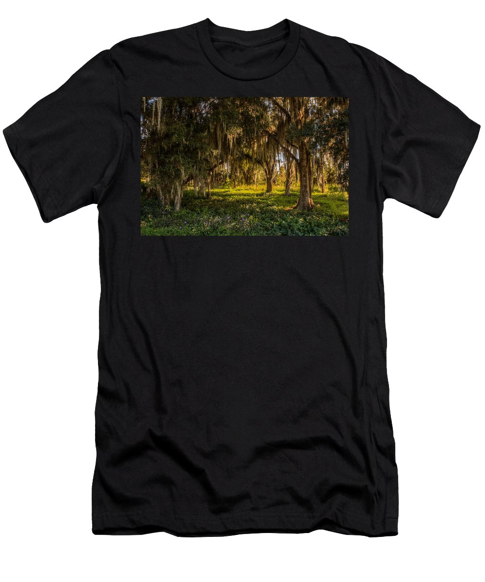 Live Oak Tree Men's T-Shirt (Athletic Fit) featuring the photograph Live Oak Tree by Zina Stromberg
