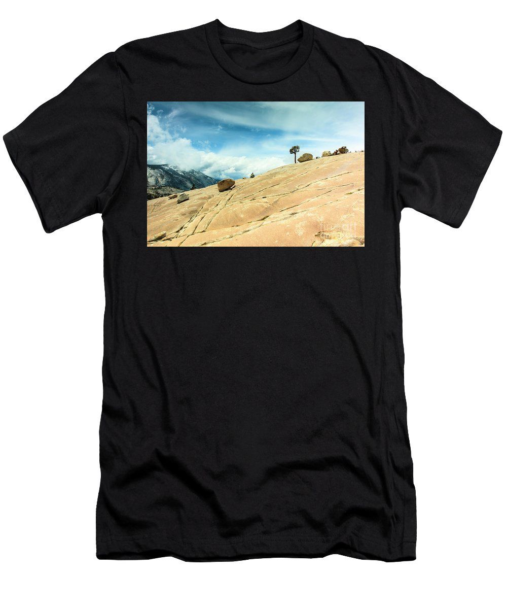 Yosemite National Park Men's T-Shirt (Athletic Fit) featuring the photograph Lone Tree At Yosemite by Ben Graham