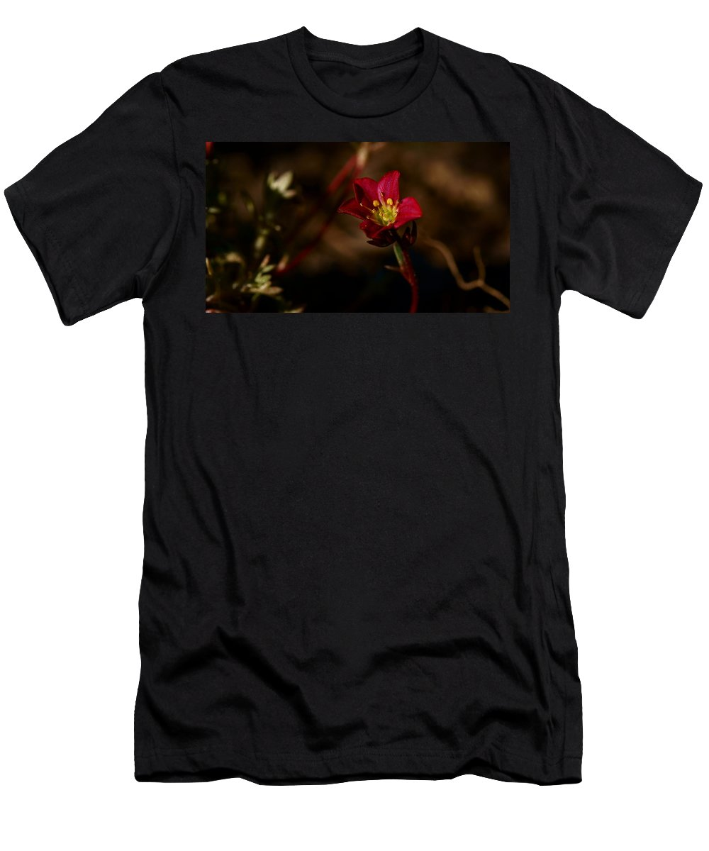 Flower Men's T-Shirt (Athletic Fit) featuring the photograph Lonely Flower by Ben Frieres