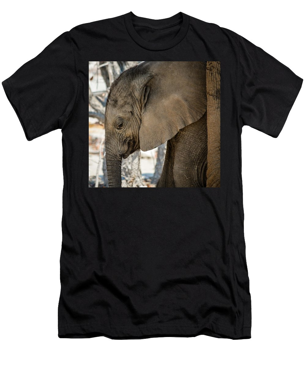Elephant Men's T-Shirt (Athletic Fit) featuring the photograph Long Lip by Mari van Bosch