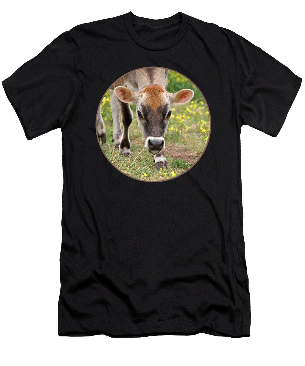 Pasture Apparel