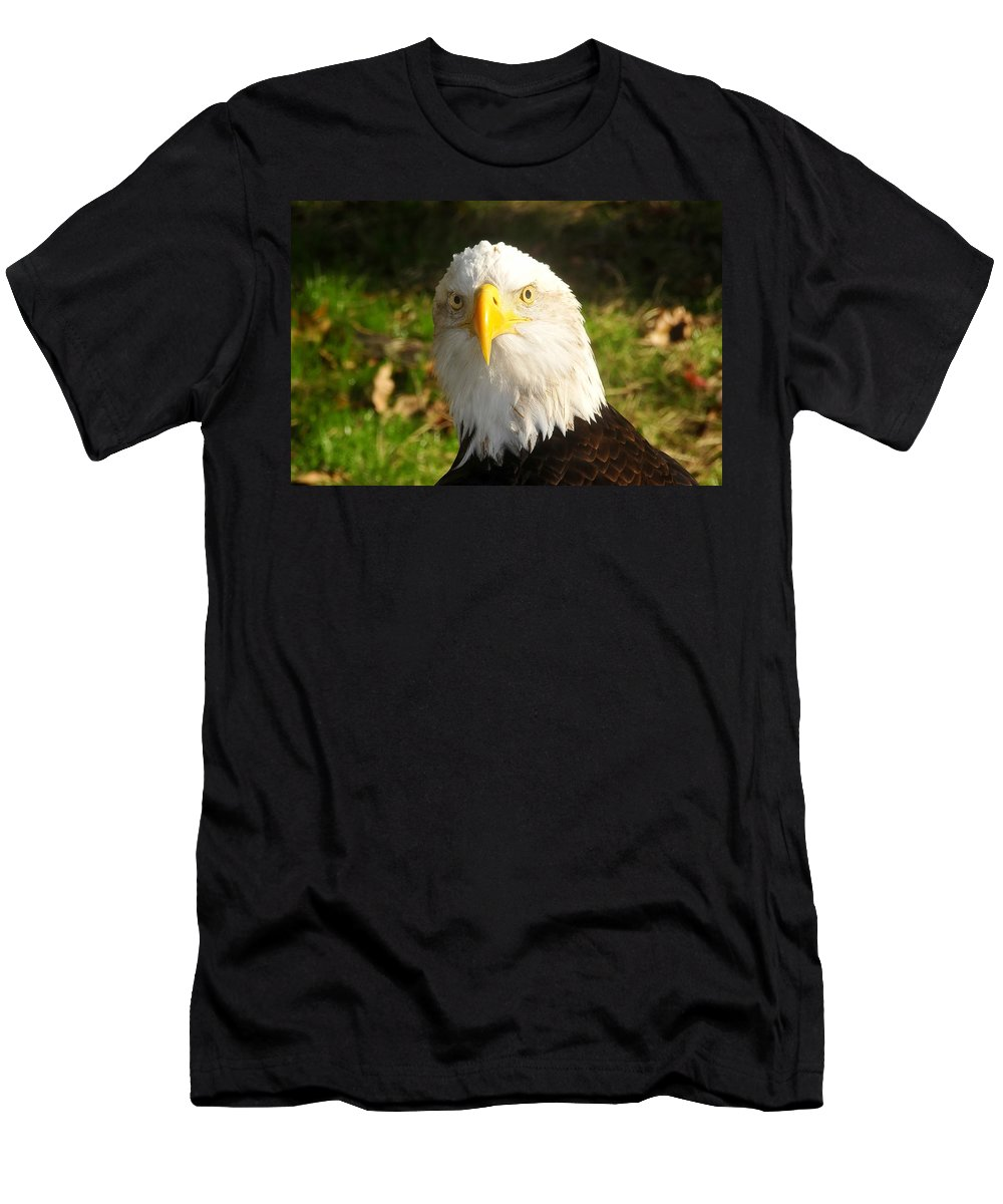 American Bald Eagle Men's T-Shirt (Athletic Fit) featuring the photograph Looking Eagle by David Lee Thompson