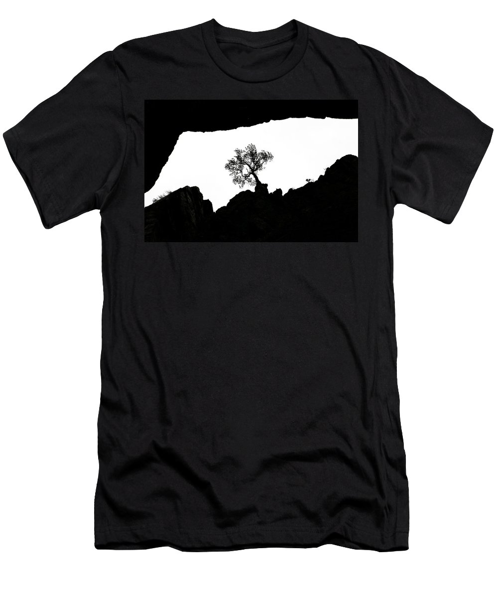 Tree Men's T-Shirt (Athletic Fit) featuring the photograph Looking Up 2 by Marilyn Hunt