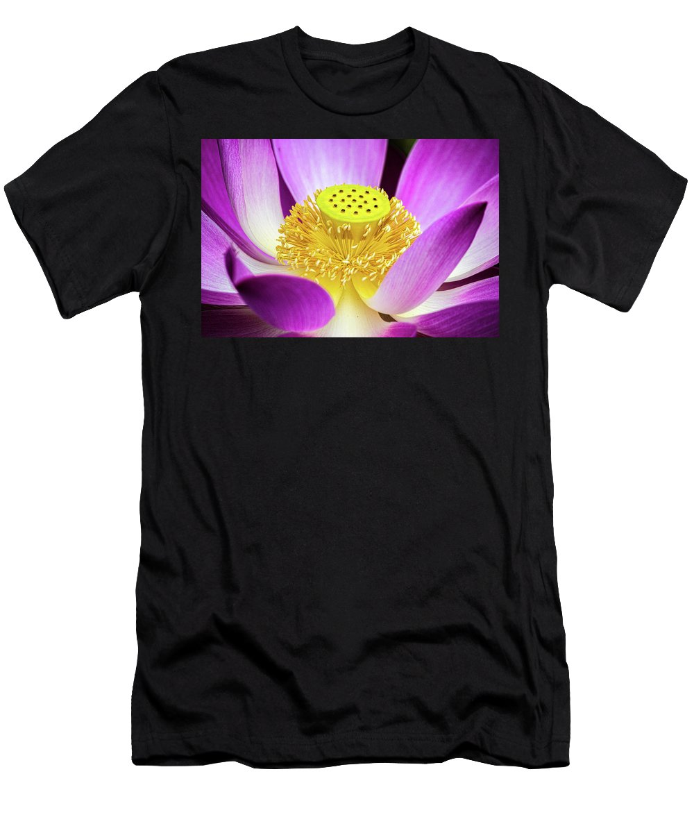Flowers Men's T-Shirt (Athletic Fit) featuring the photograph Lotus Central Detailed by David Werner