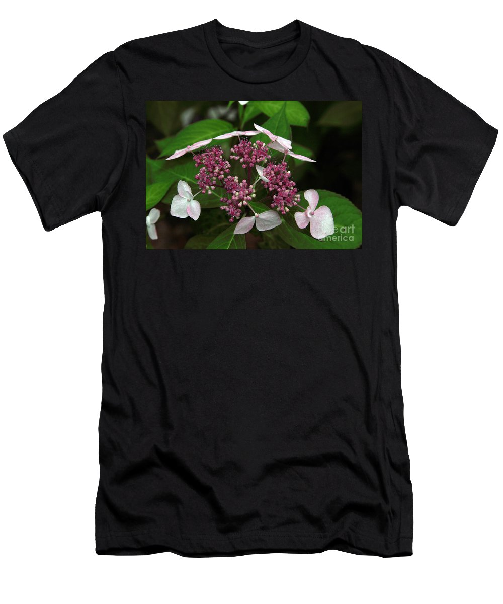 Hydrangea Men's T-Shirt (Athletic Fit) featuring the photograph Lovely by Amanda Barcon