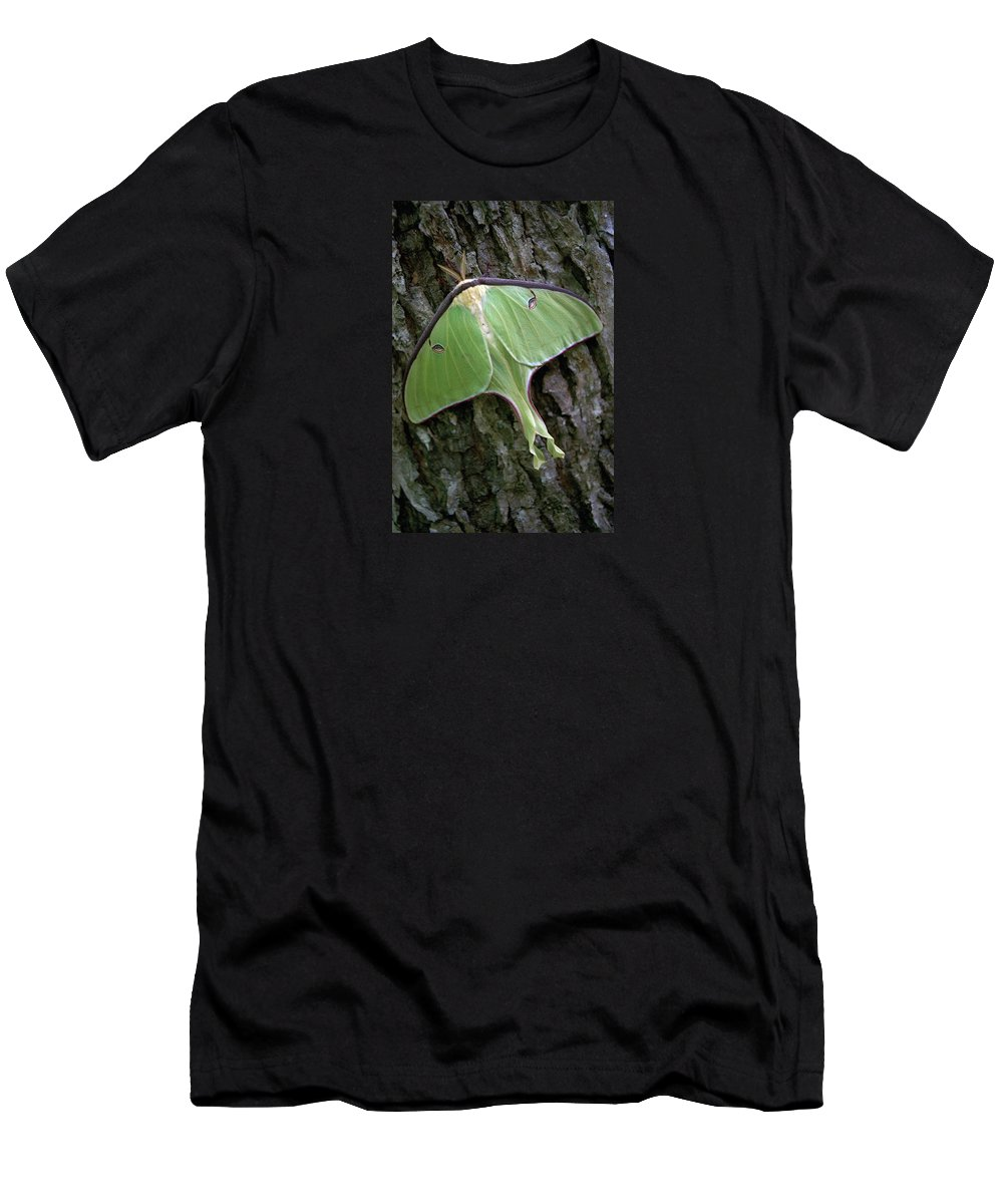 Luna Moth Men's T-Shirt (Athletic Fit) featuring the photograph Luna Moth by Marie Hicks