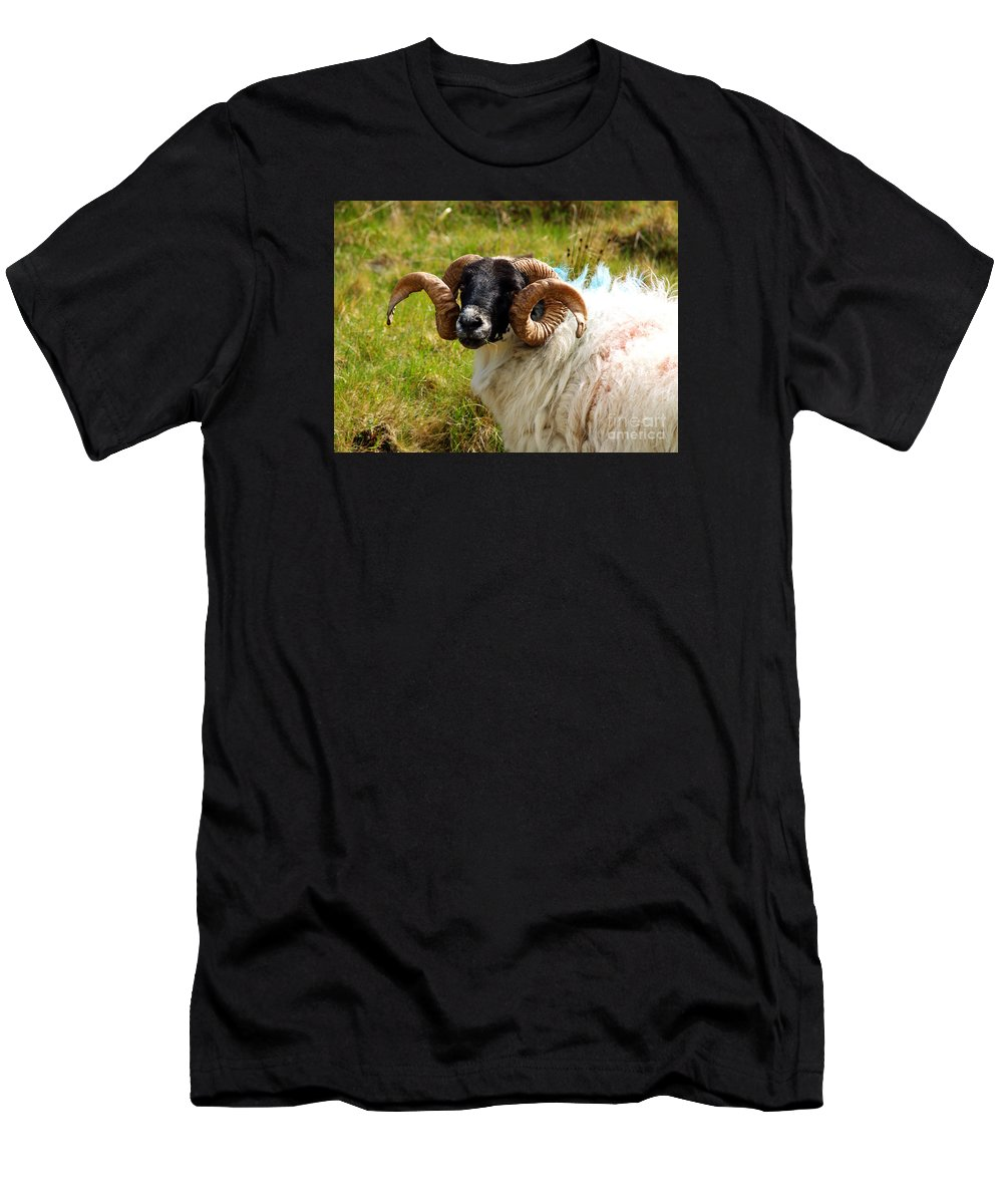 Fine Art Photography Men's T-Shirt (Athletic Fit) featuring the photograph Lunchtime by Patricia Griffin Brett