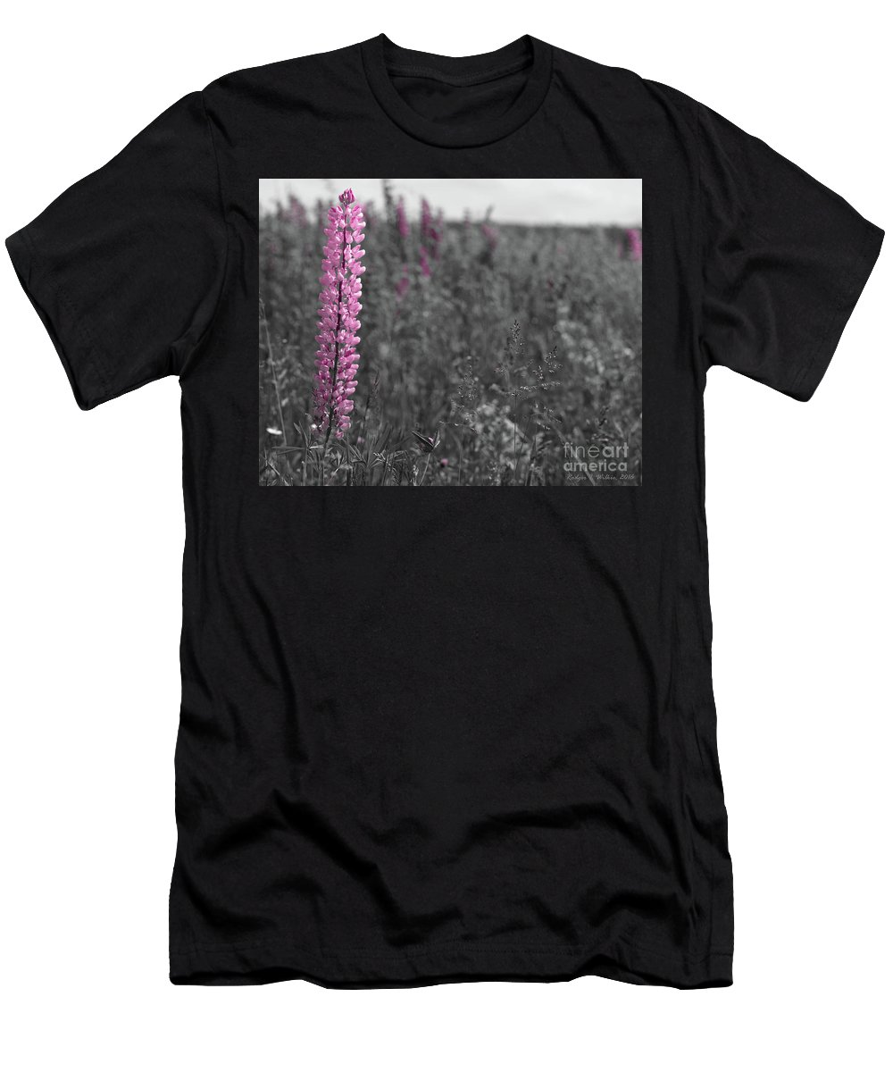Canada Men's T-Shirt (Athletic Fit) featuring the photograph Lupins 2016 27a by Rodger Wilkie