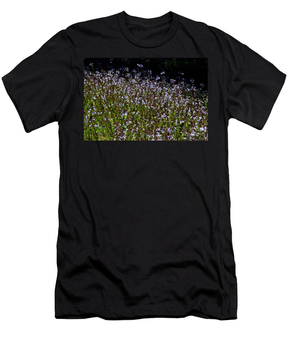 Lyre Leaf Sage Men's T-Shirt (Athletic Fit) featuring the photograph Lyre Leaf Sage by Barbara Bowen