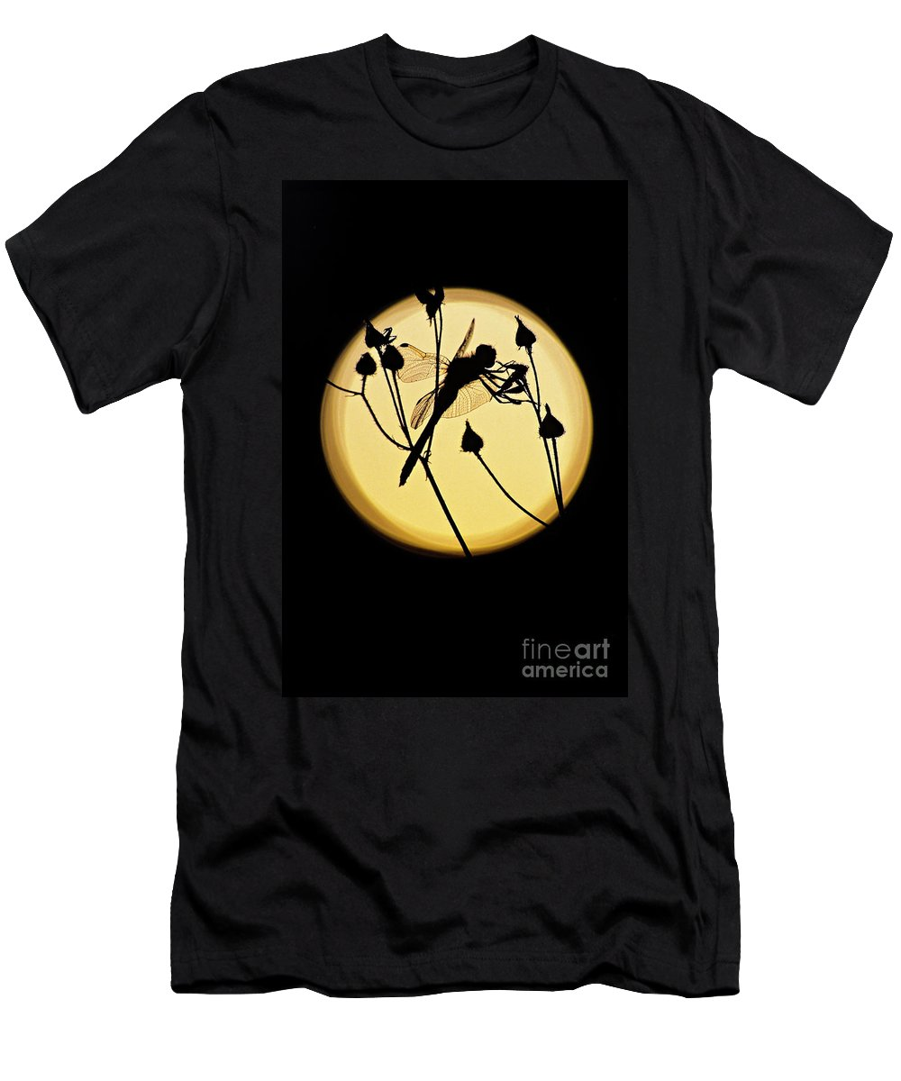 Dragonfly Men's T-Shirt (Athletic Fit) featuring the photograph Magical Dragonfly by Michael Wheatley
