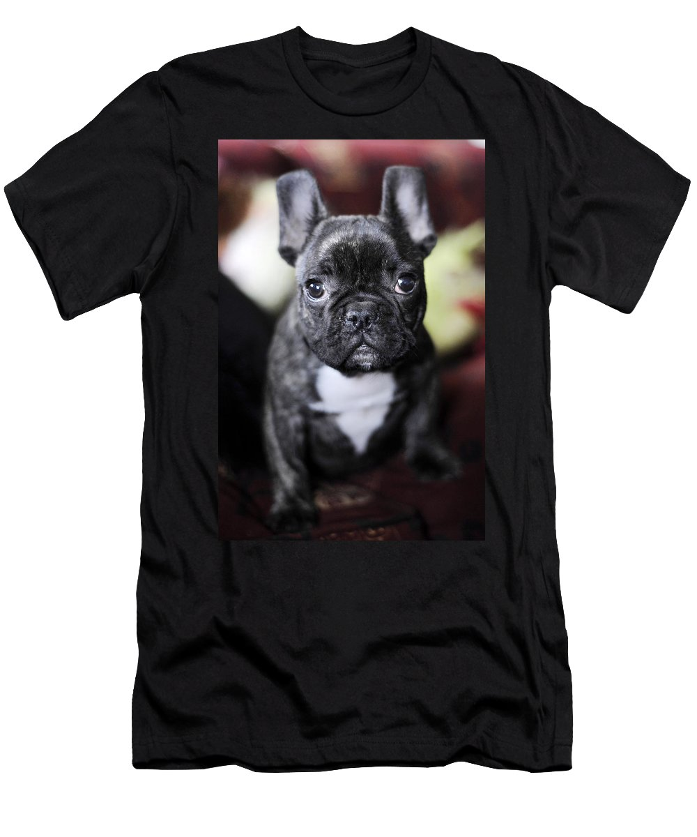 Dog Men's T-Shirt (Athletic Fit) featuring the photograph Magoo II by Rafa Rivas