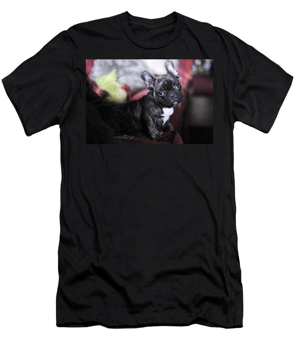 Dog Men's T-Shirt (Athletic Fit) featuring the photograph Magoo by Rafa Rivas