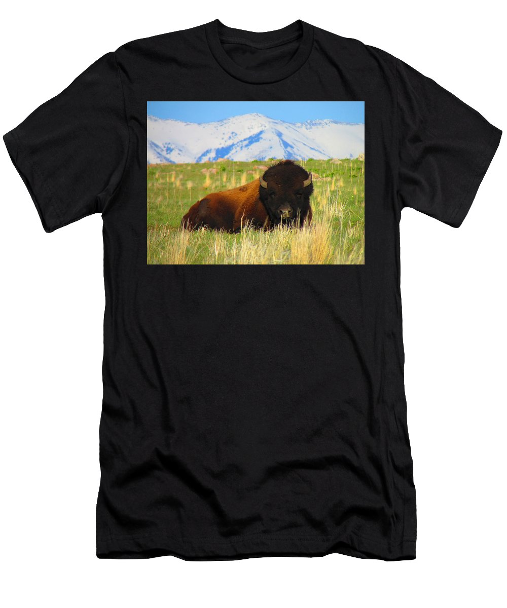 Buffalo Men's T-Shirt (Athletic Fit) featuring the photograph Majestic Buffalo by Carol Dyer
