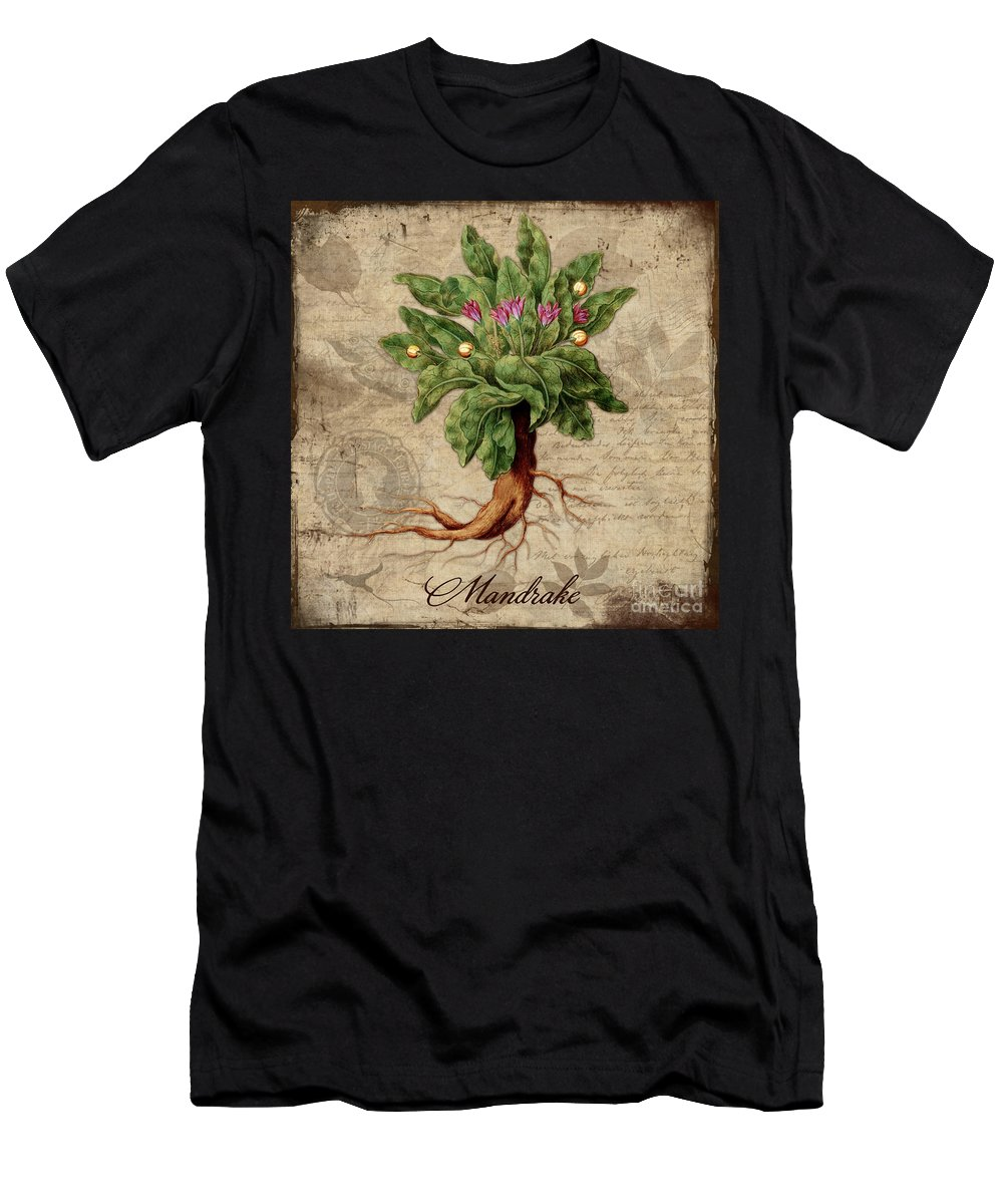 Mandrake Men's T-Shirt (Athletic Fit) featuring the painting Mandrake Vintage Elements Botanicals Collection by Tina Lavoie