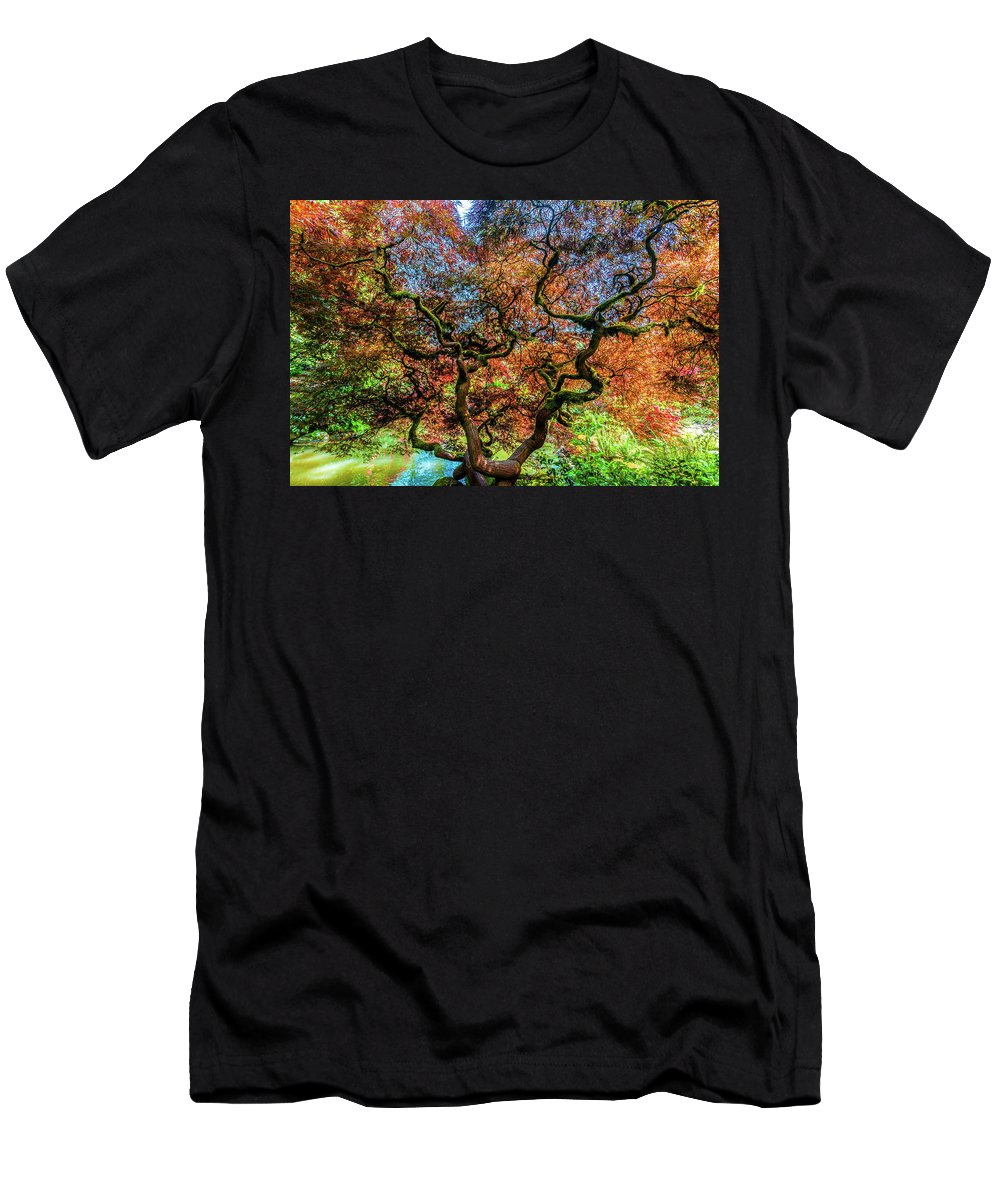 Landscapes Men's T-Shirt (Athletic Fit) featuring the photograph Maple Of Kubota Gardens by Larry Waldon