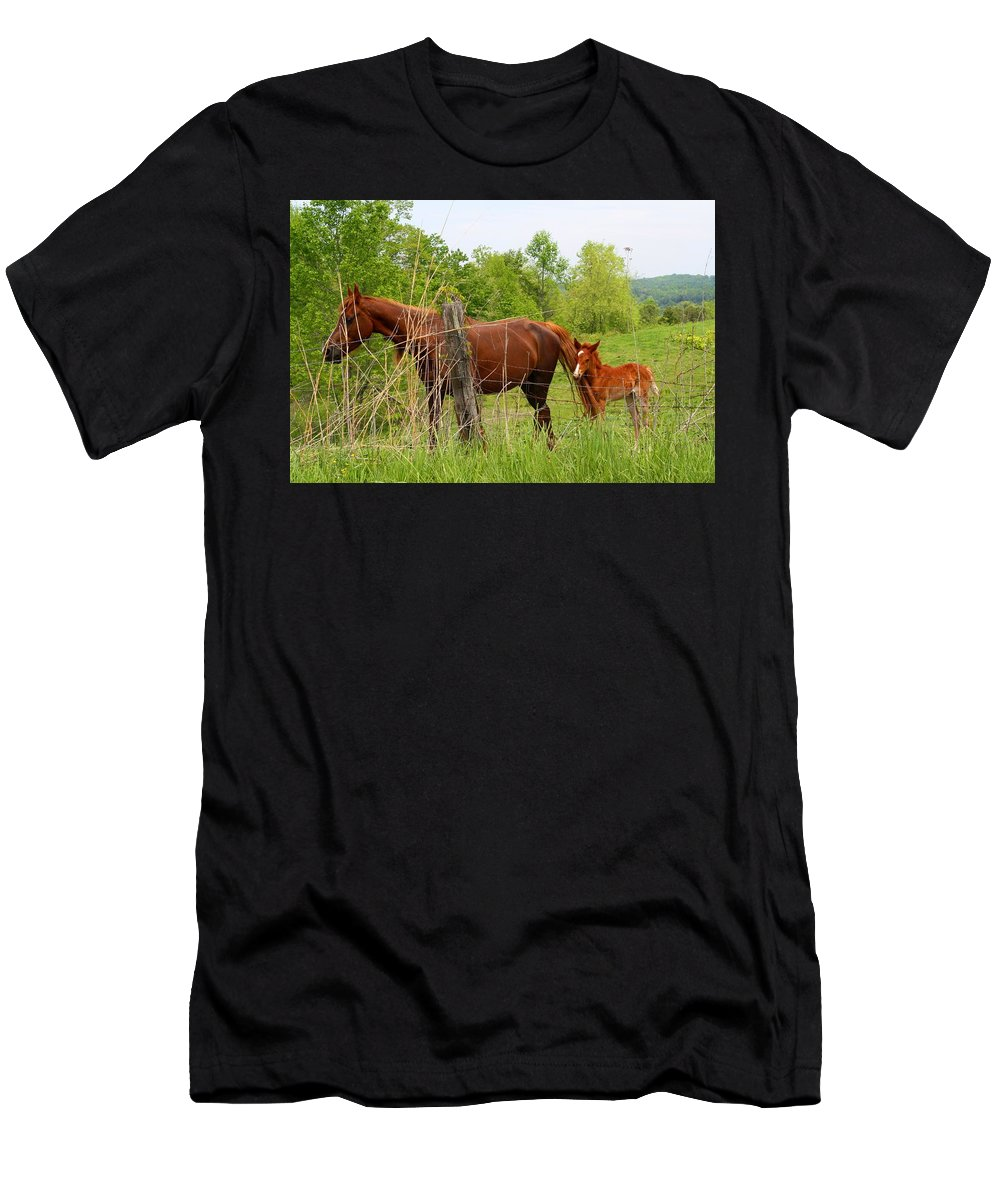 Mare Men's T-Shirt (Athletic Fit) featuring the photograph Mare And Foal by Kathryn Meyer