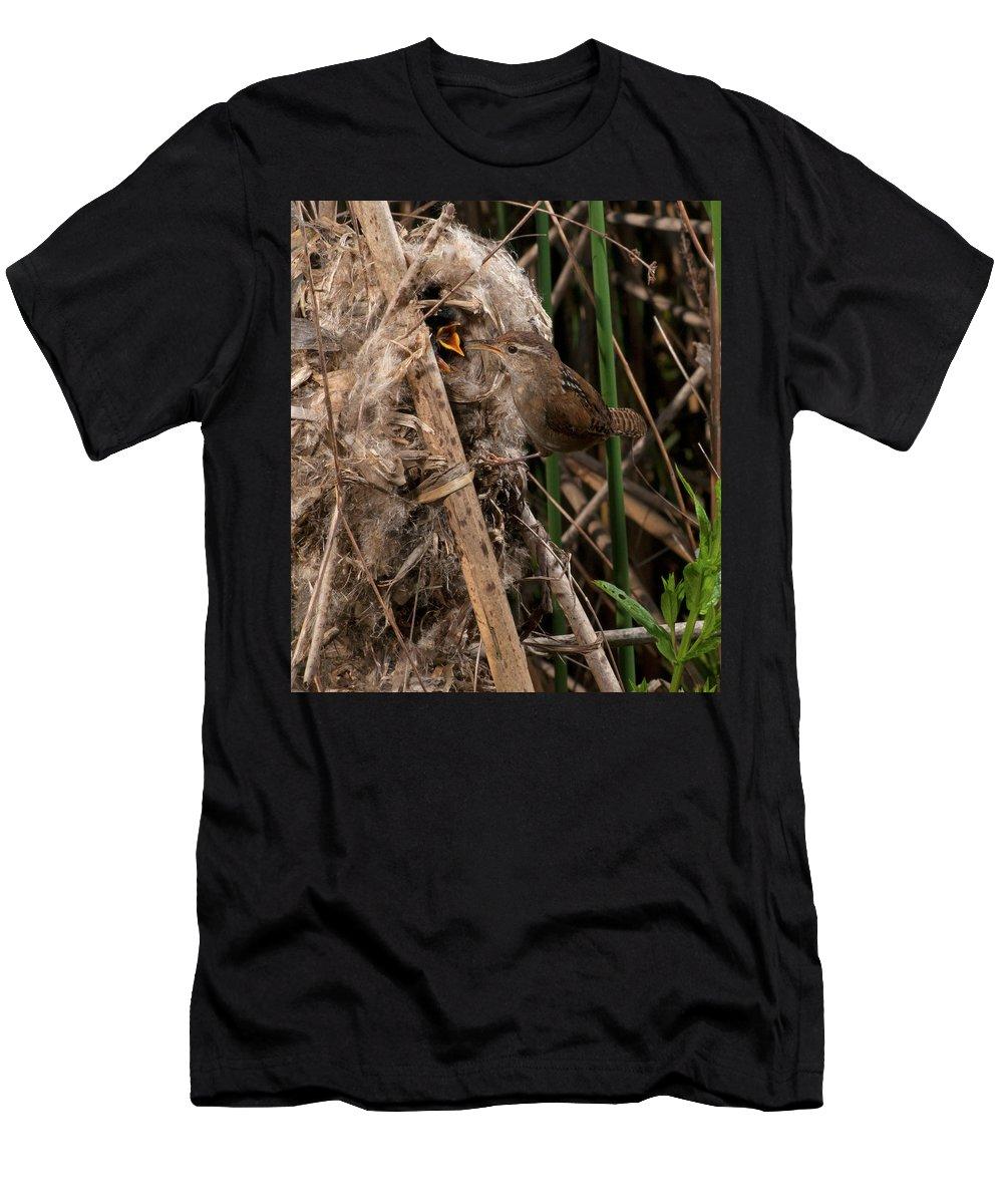 Portrait Men's T-Shirt (Athletic Fit) featuring the photograph Marshy Nest by Damon Calderwood