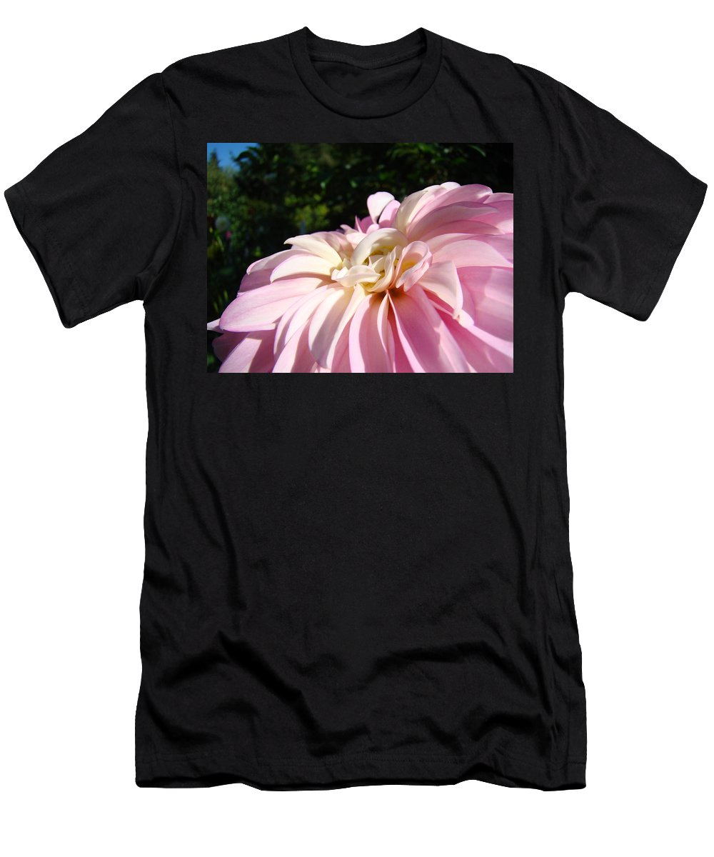Dahlia Men's T-Shirt (Athletic Fit) featuring the photograph Master Gardener Pink Dahlia Flower Garden Art Prints Canvas Baslee Troutman by Baslee Troutman
