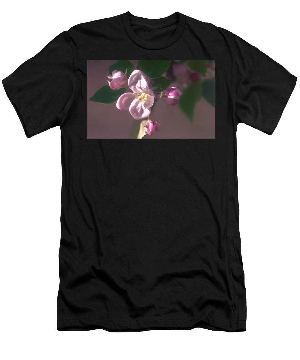 Apple Men's T-Shirt (Athletic Fit) featuring the photograph Mauve Blossom by Barbara St Jean